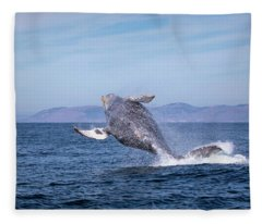 Humpback Breaching - 03 Fleece Blanket