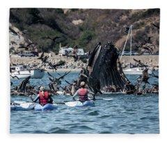 Humpbacks In Avila Harbor Fleece Blanket