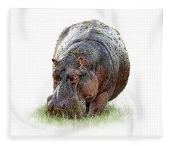 Hungry Hippo Isolated On White Fleece Blanket