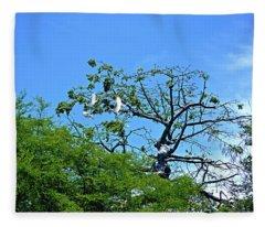 Ibis Risen Fleece Blanket