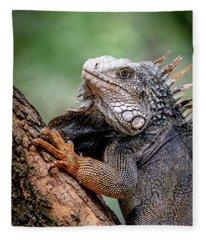 Iguana's Portrait Fleece Blanket