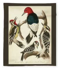 1. Red-headed Woodpecker. 2. Yellow-bellied Woodpecker. 3. Hairy Woodpecker. 4. Downy Woodpecker. Fleece Blanket
