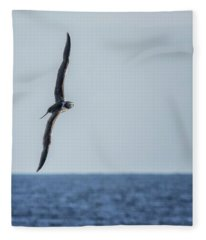 Immature Masked Booby, No. 5 Sq Fleece Blanket