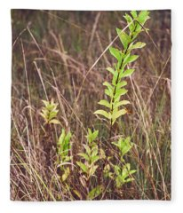 Fleece Blanket featuring the photograph In Tall Grass by Whitney Goodey