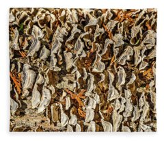 Turkey Tailed Bracket Fungi Fleece Blanket