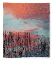 Inspiration For A Snowbird Fleece Blanket