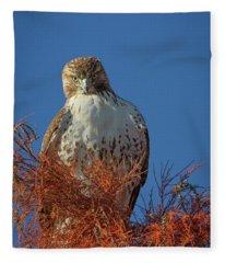 Intensity  Fleece Blanket