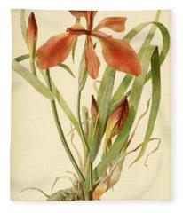 Iris Cuprea Copper Iris.  Fleece Blanket