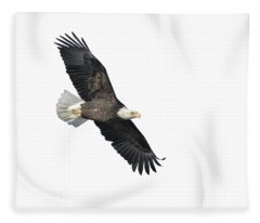 Isolated Bald Eagle 2018-2 Fleece Blanket