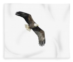 Isolated Bald Eagle 2018-4 Fleece Blanket