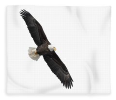 Isolated Bald Eagle 2019-1 Fleece Blanket