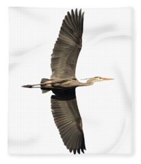 Isolated Great Blue Heron 2018-1 Fleece Blanket