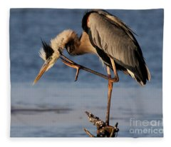Itchy - Great Blue Heron Fleece Blanket