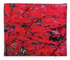 Japanese Maple In The Fall Fleece Blanket