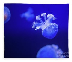 Jelly Fish At The Oceanographic Museum Of Monaco Jacques Cousteau Museum Fleece Blanket