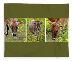 Jersey Fields Of Gold Fleece Blanket