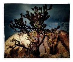 Joshua Tree At Midnight Fleece Blanket