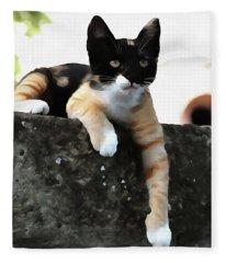Just Chillin Tricolor Cat Fleece Blanket