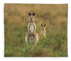 Kangaroos In The Countryside Fleece Blanket