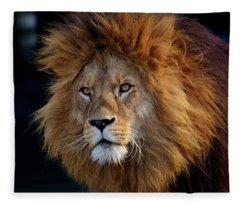 King Lion Fleece Blanket