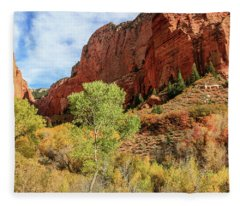 Kolob Canyon 1, Zion National Park Fleece Blanket
