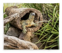 Lace Monitor During The Day. Fleece Blanket