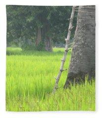 Ladder To Sugar Fleece Blanket