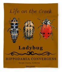 Ladybug Life Cycle Fleece Blanket