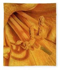 Land Ho Fleece Blanket