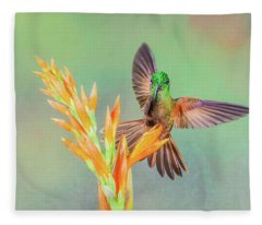 Landing Fleece Blanket