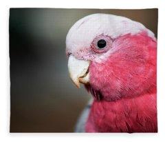Large Pink And Grey Galah. Fleece Blanket