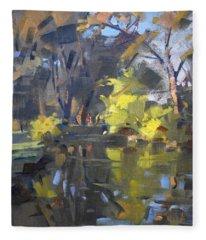Last Suntouches In Ellicott Creek Park  Fleece Blanket