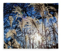 Late Day Grasses And Trees Fleece Blanket
