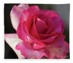 Late October Rose Fleece Blanket
