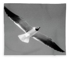 Laughing Seagull Fleece Blanket