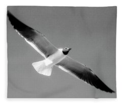 Laughing Seagull Fleece Blanket