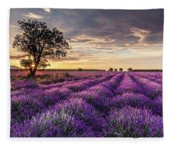 Lavender Sunrise Fleece Blanket