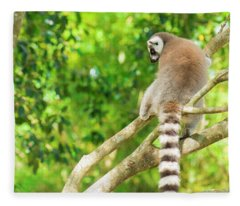 Lemur By Itself In A Tree During The Day. Fleece Blanket