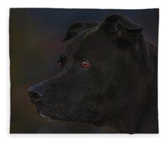 Leroy Fleece Blanket