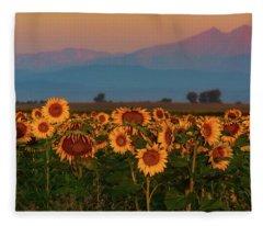 Fleece Blanket featuring the photograph Light Of The Sunflowers by John De Bord