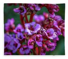 Lilac #h9 Fleece Blanket