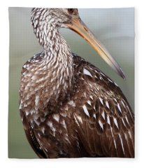 Limpkin Fleece Blanket