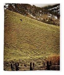 Lone Bison Fleece Blanket