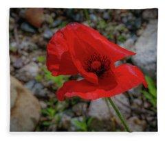 Lone Red Flower Fleece Blanket
