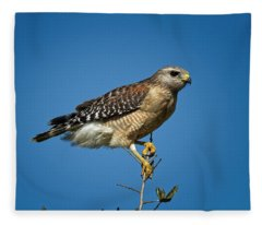 Looking For Prey Fleece Blanket