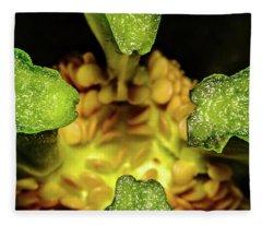 Looking Into A Pepper Fleece Blanket