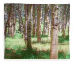 Lost In The Woods - Kenosha Pass, Colorado Fleece Blanket