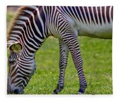 Love Zebras Fleece Blanket