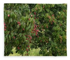 Lychee Tree With Fruit Fleece Blanket
