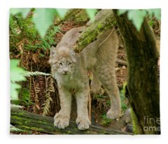 Lynx Fleece Blanket